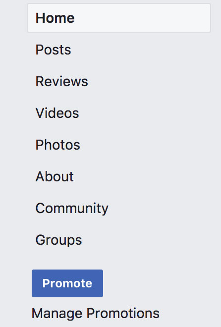 Image of the left-hand column of Facebook page with promote button.