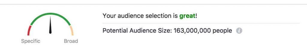Potential audience size for Facebook promotion.